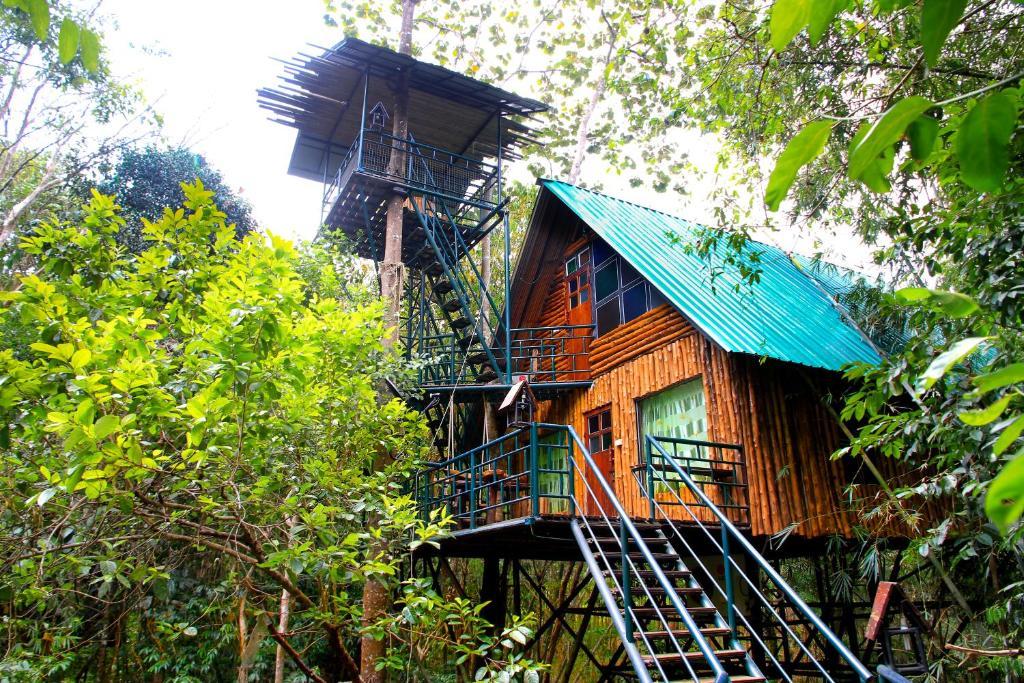 Khaosok Treehouse Resort