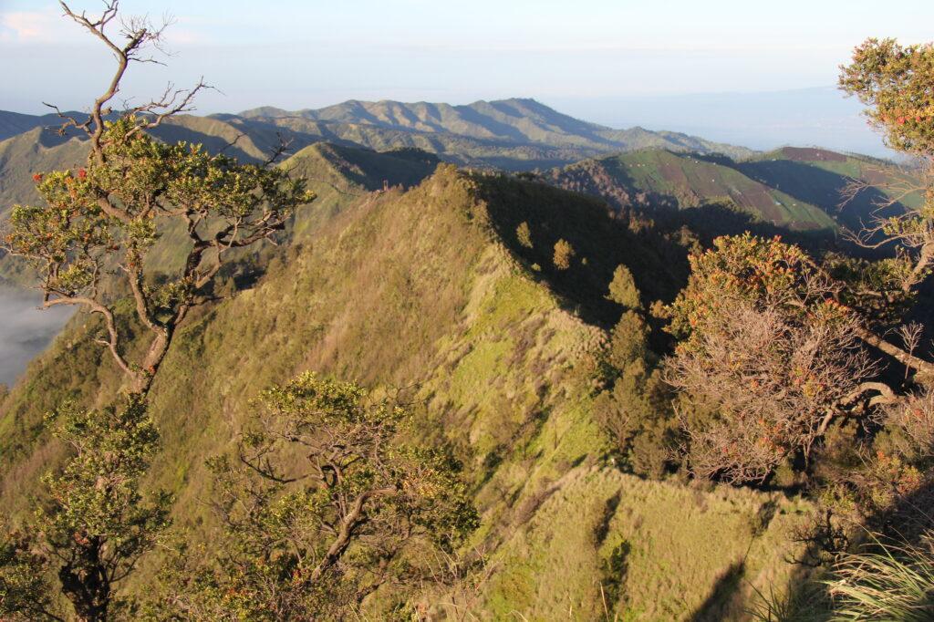 Бромо Вулкан Бромо Вулкан Бромо (Gunung Bromo) на Яве IMG 8728 1024x682