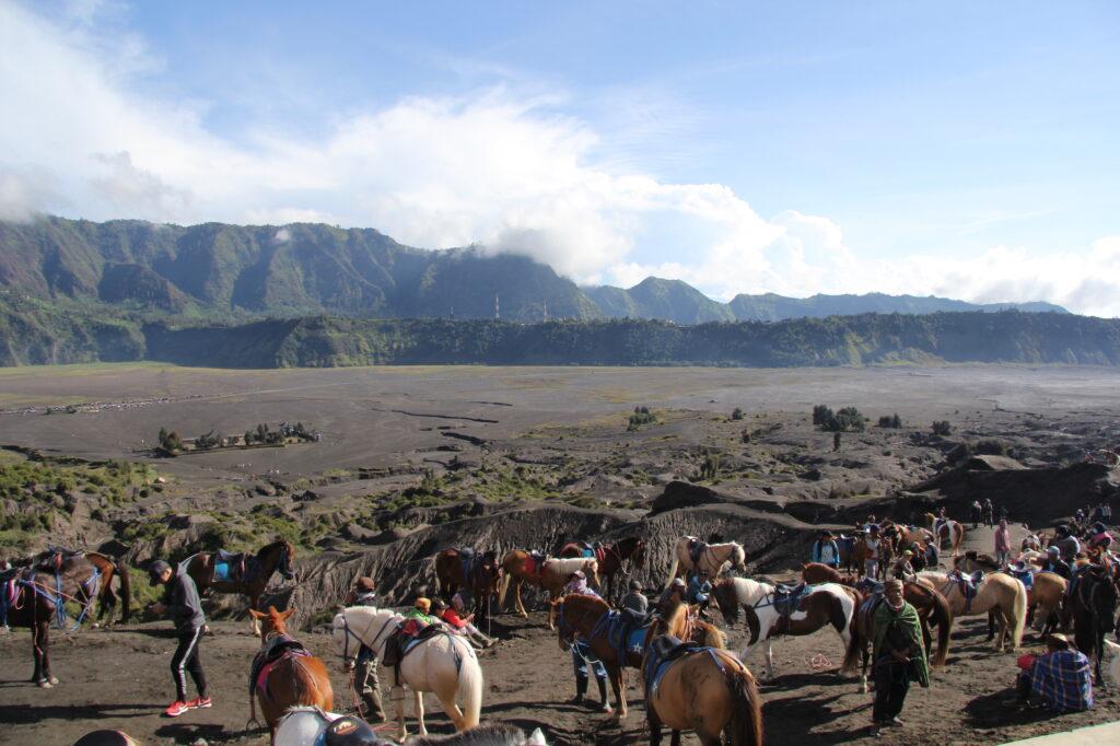 Бромо Вулкан Бромо Вулкан Бромо (Gunung Bromo) на Яве IMG 8794 1024x682