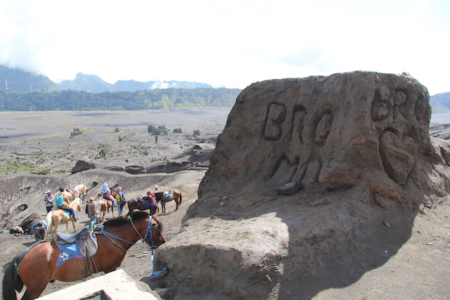 Бромо Вулкан Бромо Вулкан Бромо (Gunung Bromo) на Яве IMG 9046